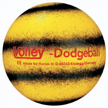 VOLLEY Softball Dodgeball