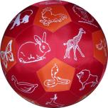 Lernspielball Bilderball Tiere