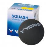 Victor Squashball