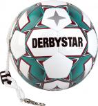 Derbystar Pendelball Swing